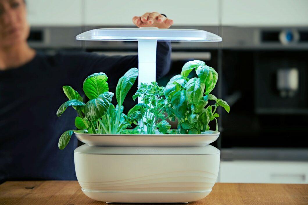 Das Beleuchtungs- und Bewässerungssystem erledigt das Gärtnern autark und macht Keimlinge wie Microgreens innerhalb einer Woche fit für den Verzehr. (Foto: Bosch)