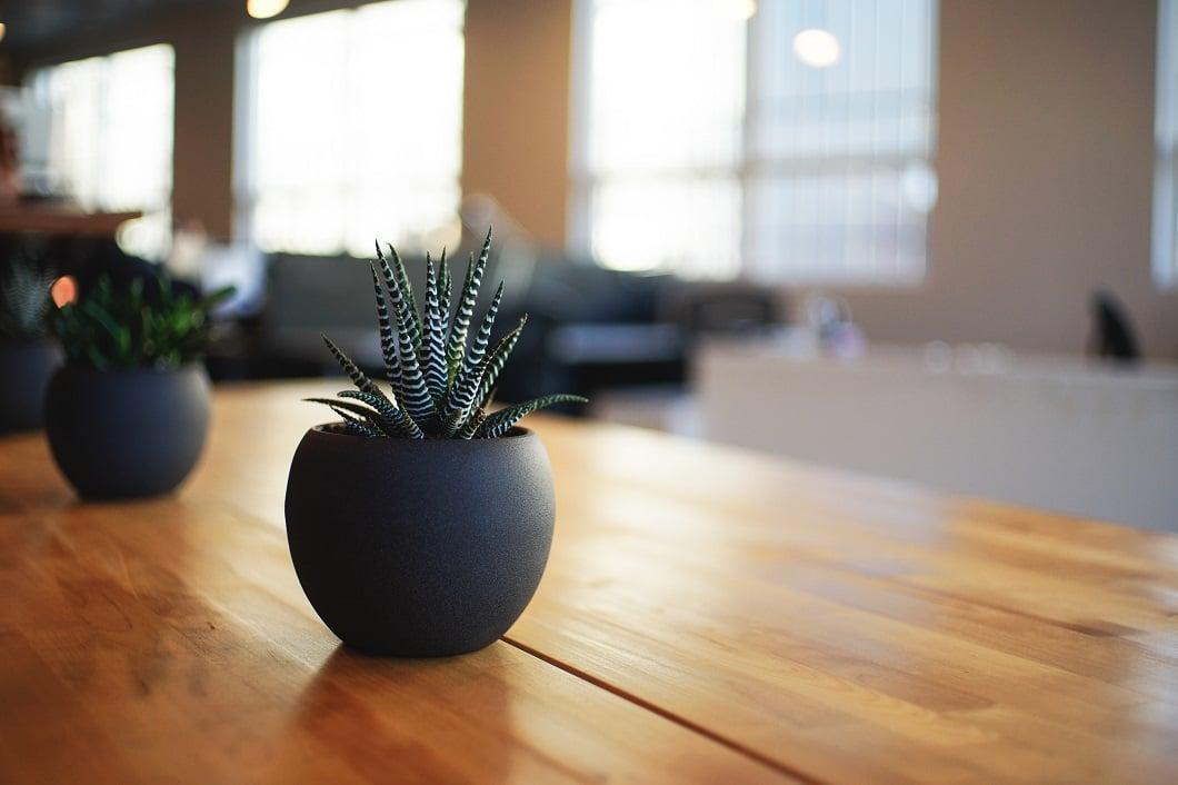 Der Klassiker unter den Küchentischen: Eiche Massivholz, robust und doch elegant. (Foto: Alvin Engler)