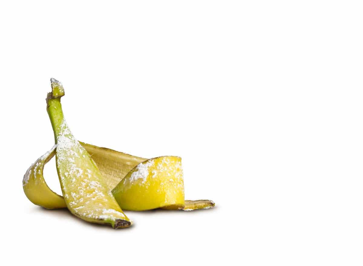 Der FreezyBoy beugt nicht nur verfaulenden Gerüchen aus dem Müllbereich vor, sondern schützt im Sommer auch vor Fruchtfliegen- und Schädlingsbefall. Kompostmüll kann so bis zu einer Woche länger in der Küche lagern. (Foto: AVANTYARD LTD. )