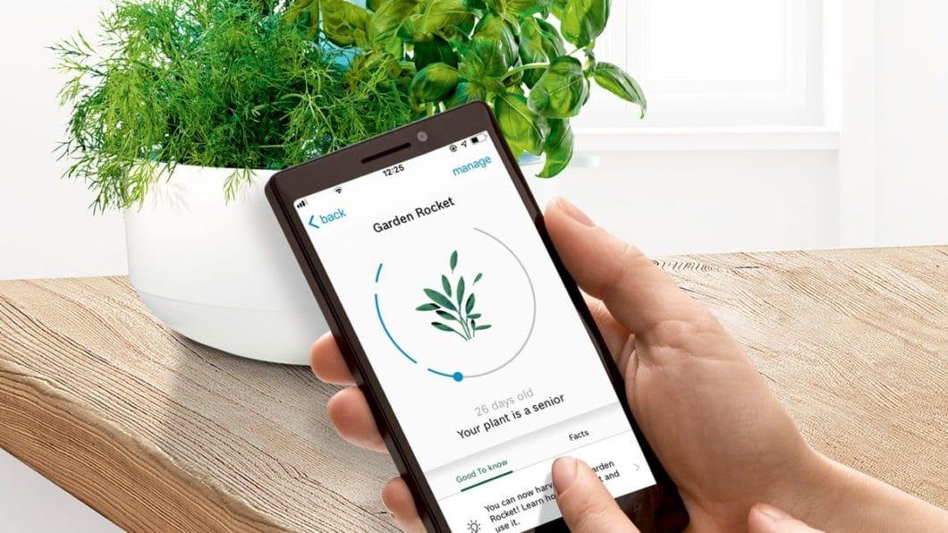 Das Smartphone ist nicht nur im regulären Alltag ein ständiger Begleiter - auch in der Küche wird es immer unablässiger im Gebrauch, z.B. beim Einsatz neuer Geräte oder zur Überwachung der eigenen Kräuteraufzucht. (Foto: Bosch)