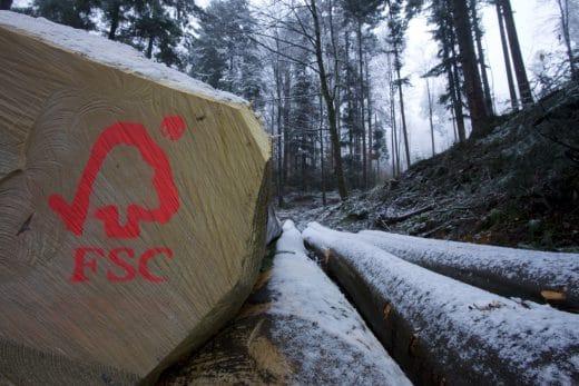 FSC ist eines der renommiertesten Abzeichen für einen nachhaltigen Produktionsweg von Holzprodukten wie Küchen, Hefte, Stifte etc. (Foto: FSC Deutschland)