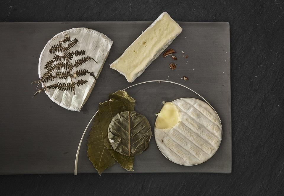 Mit der OdourFresh+ Technologie können gg. unangenehme, intensive Gerüche und Aromen - wie z.B. von reifem Käse oder Meerestieren - um bis zu 90% reduziert werden im neuen Multitür-Kühlschrank. (Foto: Grundig/ktchnmag)