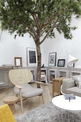 (Foto: Grégoire de Lafforest) Pinienbaum Paris Loft Wohnzimmer