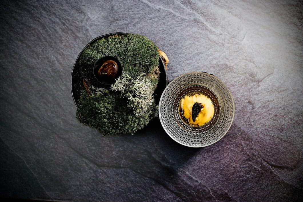 Wenn Kunst und Kulinarik verschmelzen: Im LEVITATE findet sich das Motiv des Urban Jungle hochästhetisch auf dem Teller wieder. (Foto: LEVITATE)