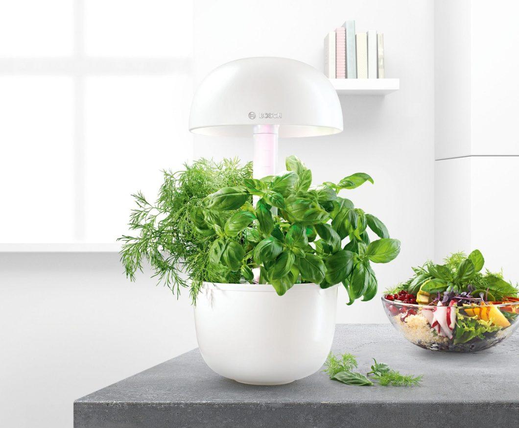 Kräuter und Gewürze zum Verfeinern von Salaten, Suppen oder für selbstgemachte Pestos und Saucen: mit dem Bosch SmartGrow holt sich der Nutzer seinen eigenen Küchengarten auch in der Großstadt ins Haus. (Foto: Bosch Hausgeräte)