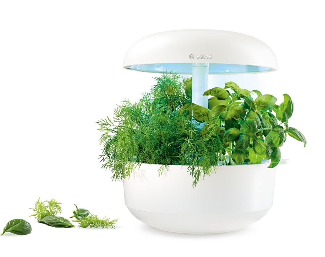 Das eierförmige Gerät kann je nach Modell zwischen 3 bis 6 verschiedene Saatkapseln fassen, die in wenigen Wochen mit automatisierter Beleuchtung und Bewässerung zu einem stattlichen Kräutergarten anwachsen. (Foto: Bosch Hausgeräte)