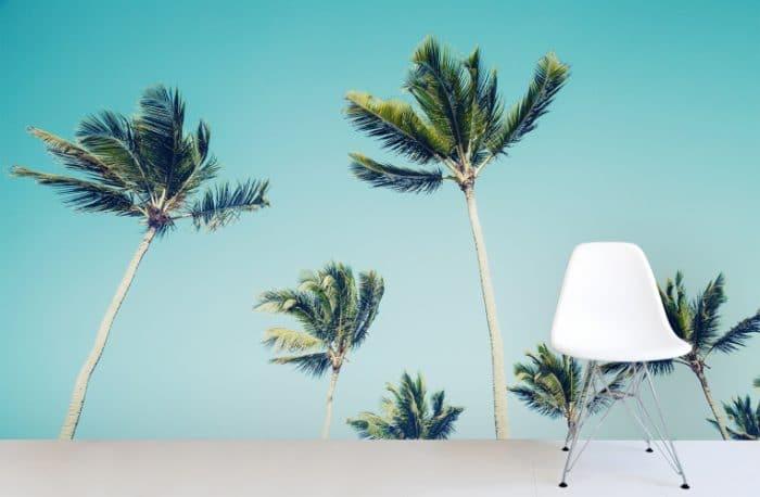 "California Dreamin' - auch an kühlen Wintertagen im grauen Deutschland. Wallpaper ""California Palms"", muralswallpaper.co.uk"