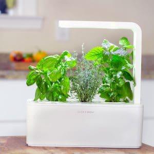 Ob Basilikum, Rosmarin oder Minze: Mit dem smarten Kräutergarten gedeihen Ihre Gewürze zum Kochen oder Cocktailmixen fast von allein. (Foto: RADBAG)